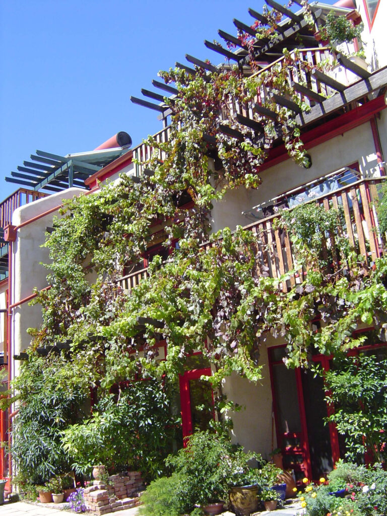 Ecocities incorporate natural ecosystems