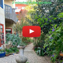 Christie Walk gardens mini-video tour